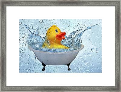 Duck Rubber Framed Print