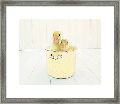 Framed Print featuring the photograph Duck Soup - Yellow Version by Amy Tyler