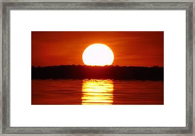 Duck Sunset II Framed Print