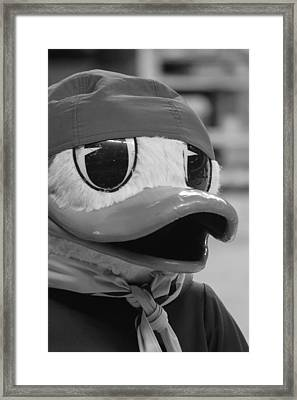 Framed Print featuring the photograph Ducking Around by Laddie Halupa