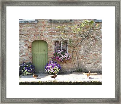 Ducks Along The Canal Framed Print by David L Griffin