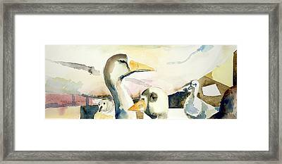 Ducks And Geese Framed Print