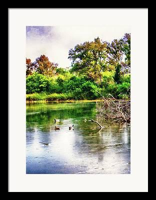 Nature Center Pond Mixed Media Framed Prints