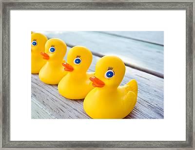 Ducks In A Row Framed Print by Maria Dryfhout