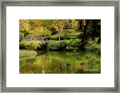 Framed Print featuring the photograph Ducks In Summertime by Iris Greenwell