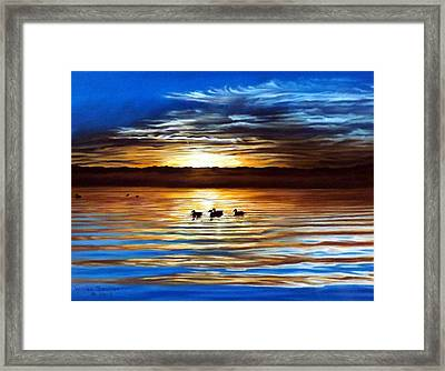 Ducks On Clear Lake Framed Print