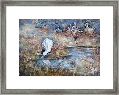 Ducks. Split Opposite Colour Harmony.  Framed Print