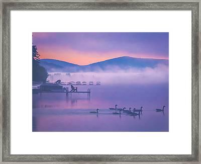 Ducks Under Fog Framed Print