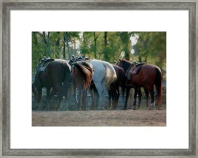 Dude Ranch Framed Print by JAMART Photography