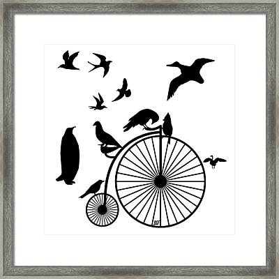 Dude The Birds Are Flocking Transparent Background Framed Print