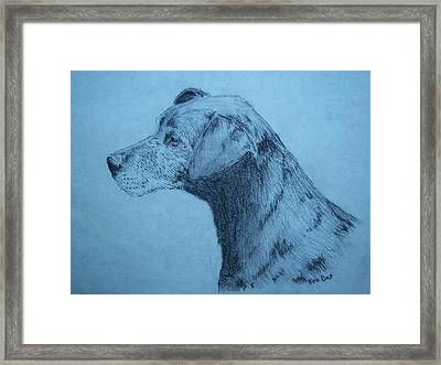 Dudley Framed Print by Ken Day