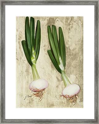 Due Cipollotti Framed Print by Guido Borelli