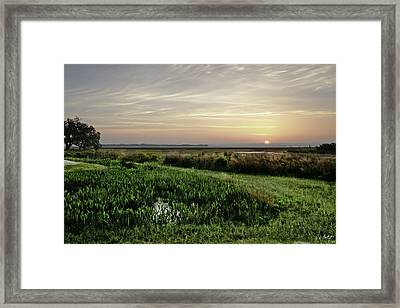 Due East Framed Print by Phill Doherty