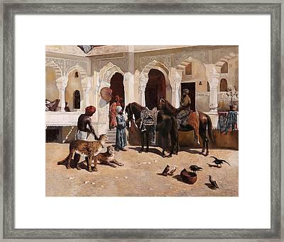 Due Ghepardi Framed Print