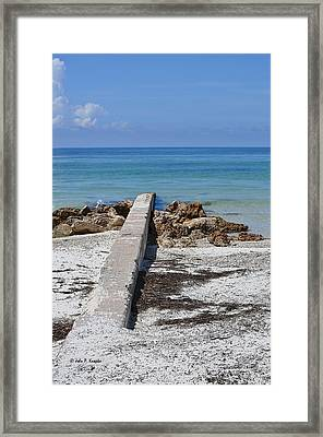 Due South Framed Print