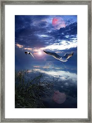 Duel Framed Print by Jaroslaw Grudzinski