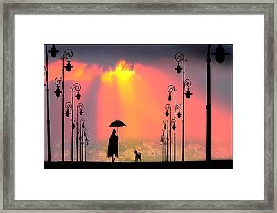 Duet Framed Print by Igor Zenin