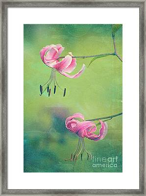Duet - V01a Framed Print by Variance Collections