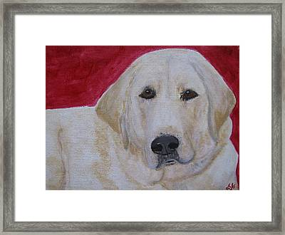 Framed Print featuring the painting Duke by Barbara Giordano