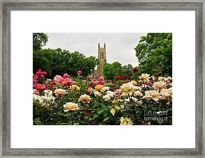 Duke Chapel And Roses Framed Print