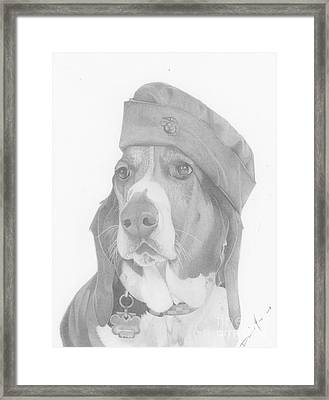 Duke Dog Drawing Framed Print