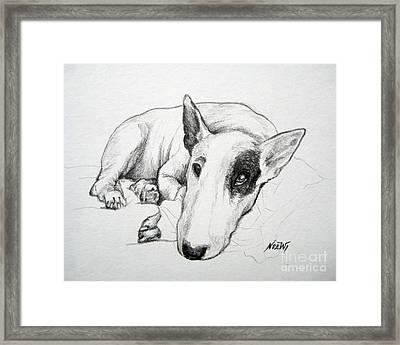 Duke Framed Print by Jindra Noewi