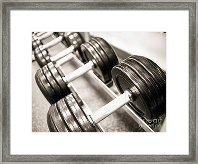 Dumbbell Weights On A Rack Framed Print by Paul Velgos