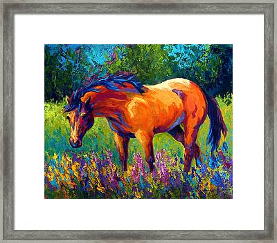 Dun Mare Framed Print by Marion Rose