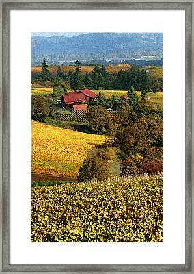 Dundee Red Hills  Framed Print