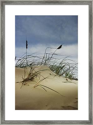 Dune And Beach Grass Framed Print