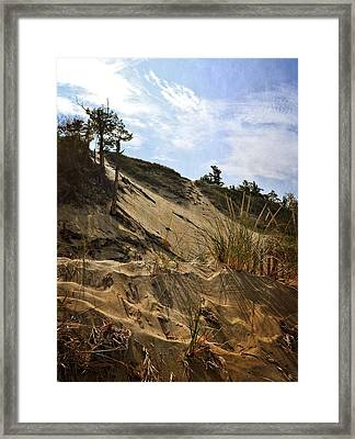 Framed Print featuring the photograph Dune And Blue Sky by Michelle Calkins