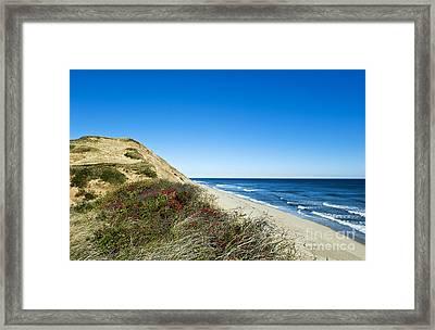 Dune Cliffs And Beach Framed Print