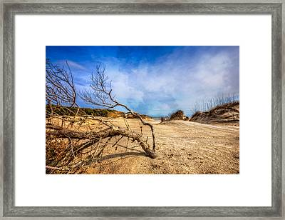 Dune Driftwood Framed Print by Debra and Dave Vanderlaan