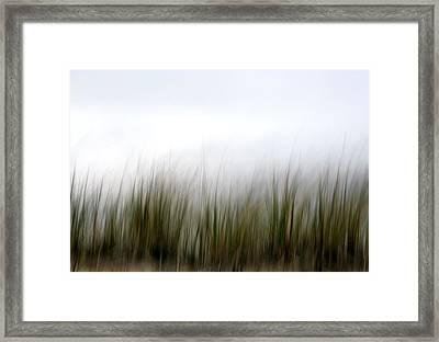 Dune Grass Framed Print by Doug Hockman Photography