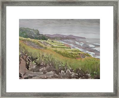 Dune Grass Field Framed Print by Bethany Lee