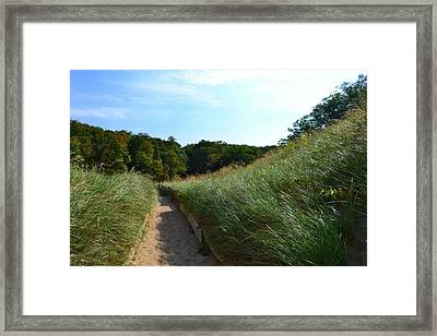 Framed Print featuring the photograph Dune Path At Laketown by Michelle Calkins
