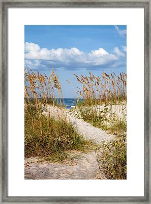 Dune Pathway At The Beach Framed Print by Dawna  Moore Photography