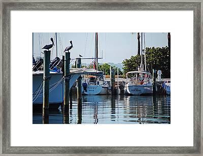 Duneden Fl. Framed Print