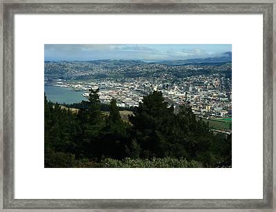 Dunedin From Signal Hill Framed Print