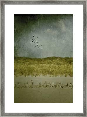 Dunes Framed Print by Joana Kruse