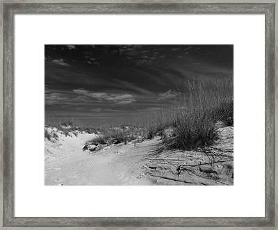 Dunes Number 1 Framed Print by Phil Penne