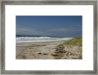 Dunes On Long Island Framed Print by Dennis Curry
