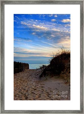 Dunes On The Cape Framed Print by Joann Vitali