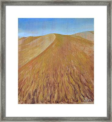 Dunes Framed Print by Tom Dauria