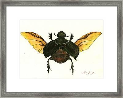 Dung Beetle Framed Print by Juan Bosco