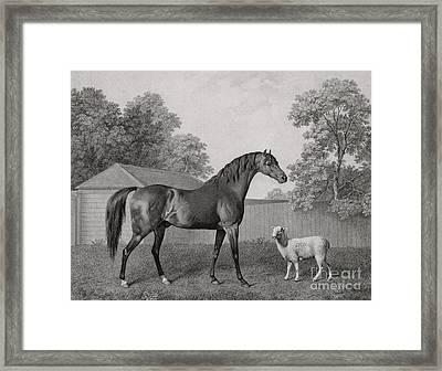 Dungannon Framed Print
