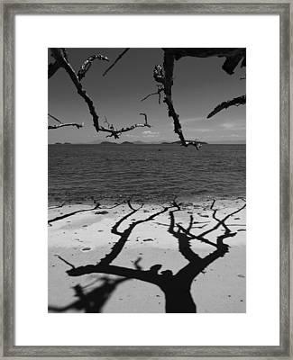 Dunk Island Australia 172 Framed Print