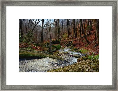 Dunnfield Creek On Nj's At Framed Print by Raymond Salani III