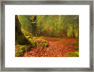 Dunstaffnage Castle Gardens Framed Print