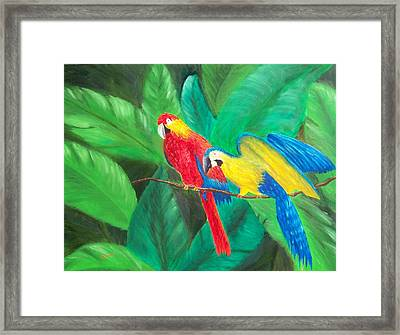 Duo Framed Print by Sandy Hemmer
